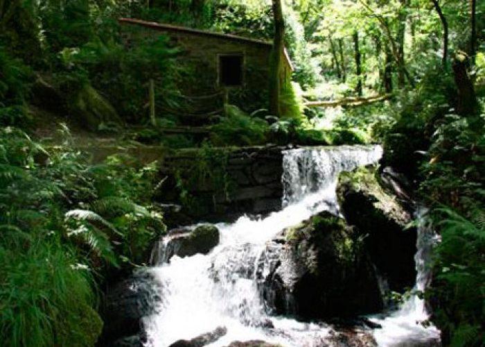 23.-ENIL-RIO-ABELLEIRA
