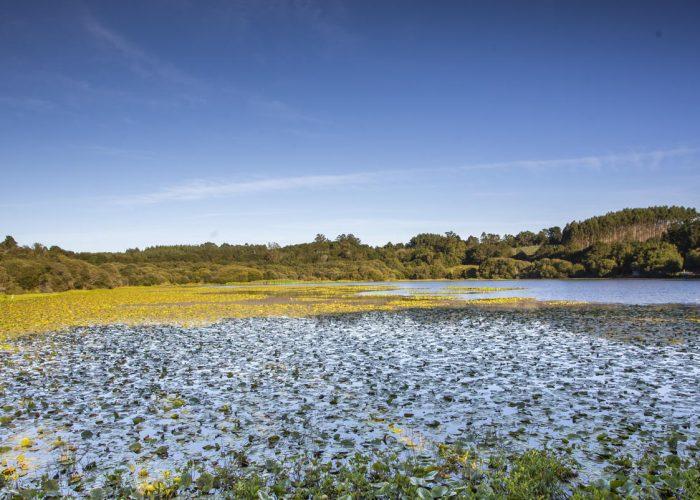 Laguna-de-Sobrado-1